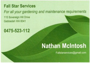 Fall Star Services