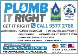 Plumb It Right